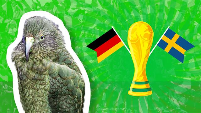Newton the psychic parrot predicts Germany-Sweden result