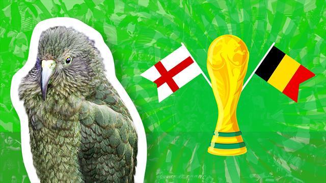 Le prono de Newton : Angleterre-Belgique, un choc qui n'a pas fait trembler notre kéa