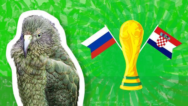 Le prono de Newton : stop ou encore pour la Russie face à la Croatie ?