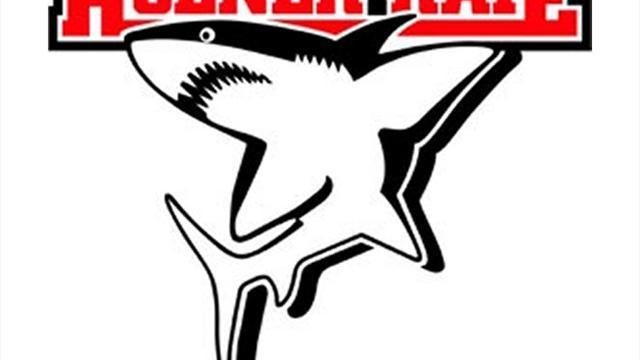 Kölner Haie verpflichten Zalewski aus Straubing