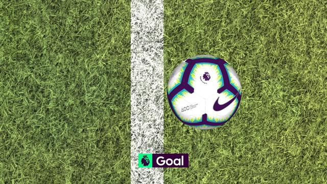 Мяч после удара Вертонгена пересек линию на 9 миллиметров. Фантастическое везение «Тоттенхэма»