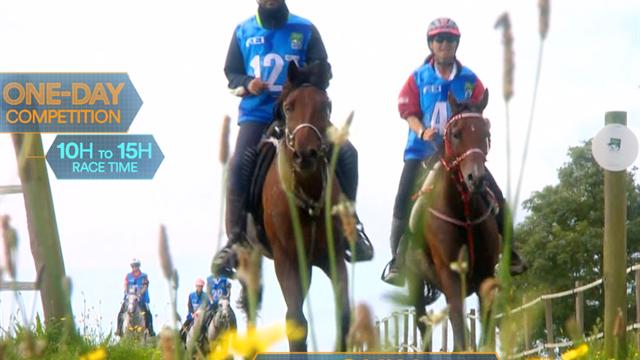 Sports Explainer: tutto ciò che devi sapere sulle prove di endurance equestre