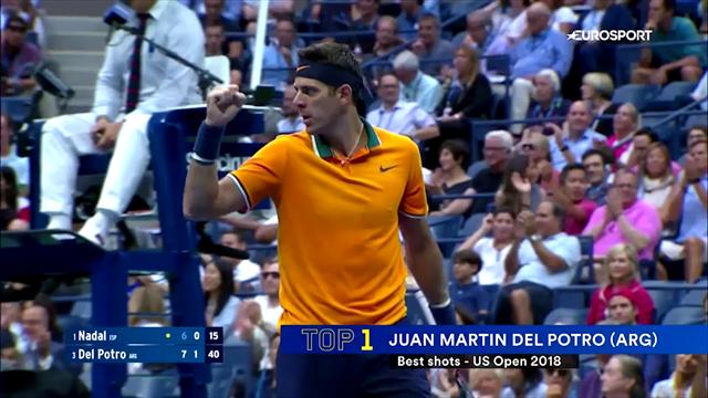 Волшебный твинер Пуя, урок геометрии от Федерера, залп Джоковича. Топ-10 ударов US Open