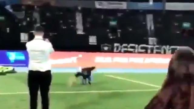 Фанат отпраздновал гол в стиле Роналду и в падении проверил прочность лица о газон