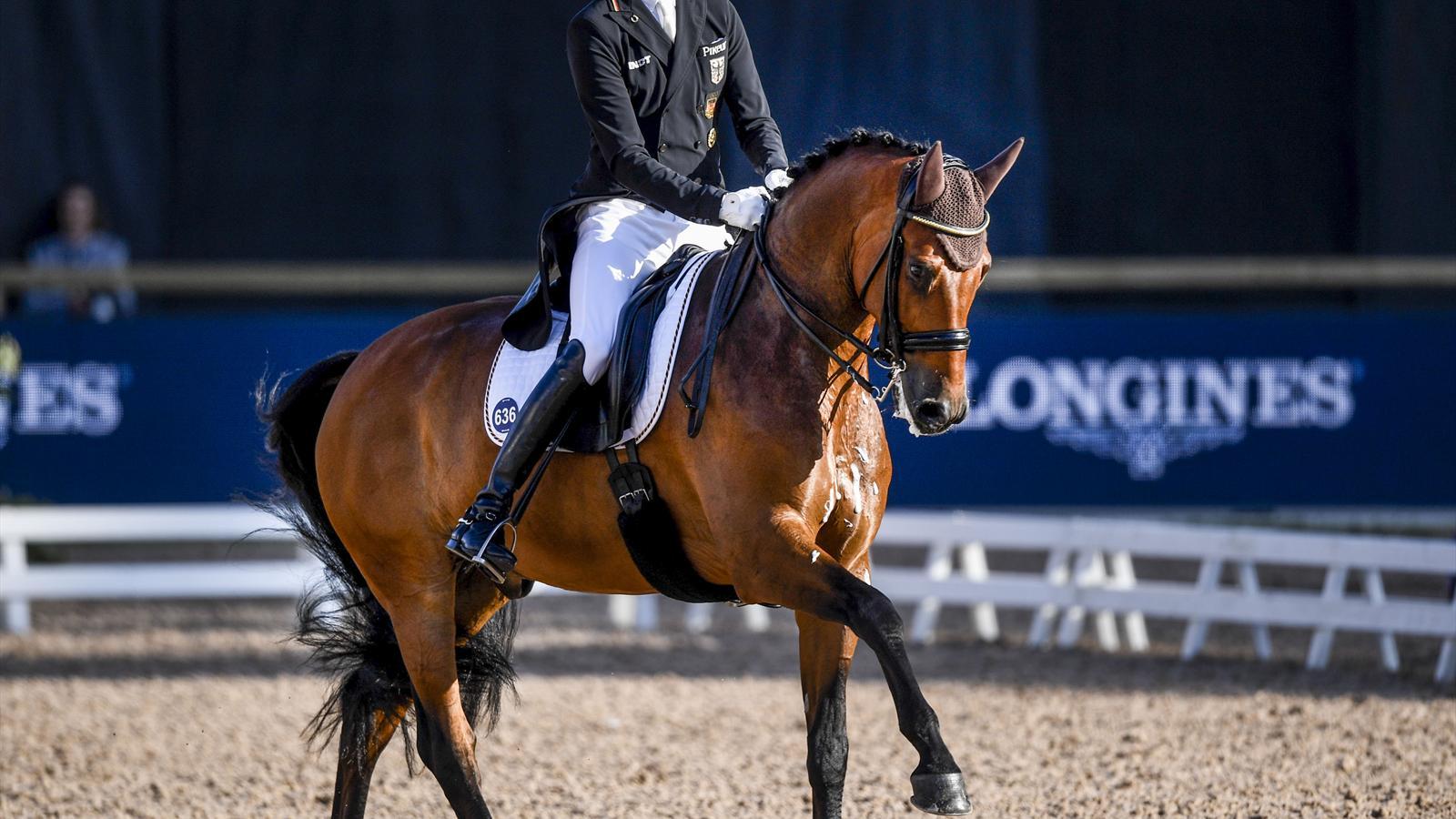Weltreiterspiele: Dressur-Equipe weiter auf Goldkurs - Pferdesport ...
