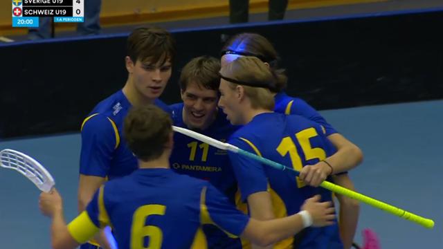 """Sverige gör mål i sista sekunden: """"Vilket svenskt spel!"""""""