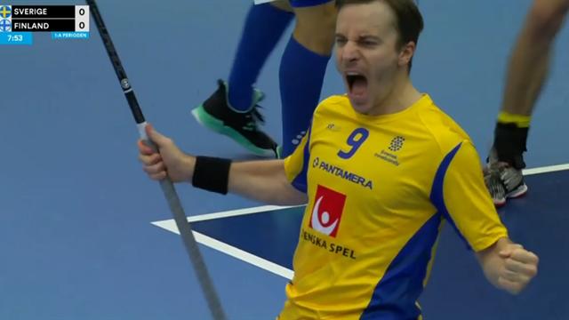 Stort jubel när Sverige tar ledningen mot Finland