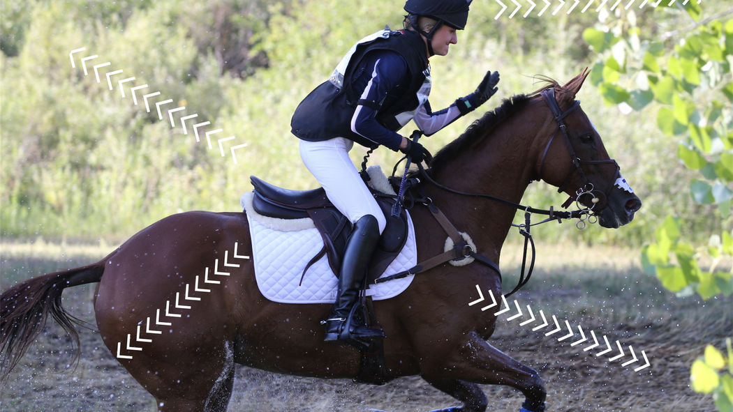 Technology and horses: a new type of connection - Equestrian