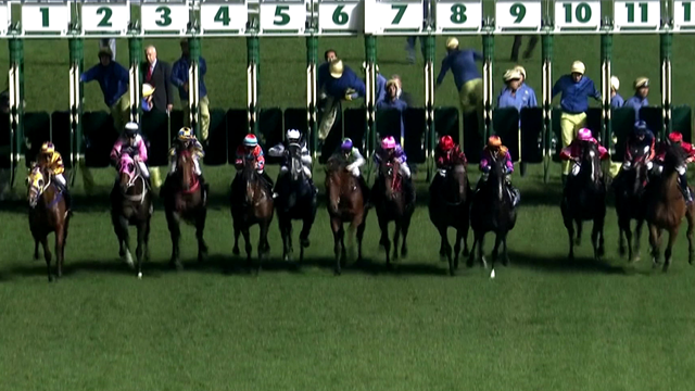 Longines Race of the Week: A thrilling finish at the Jockeys' Championship