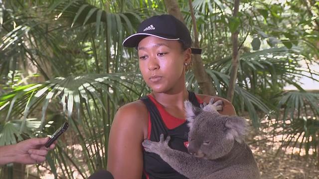 Осака поближе познакомилась с фауной Австралии: обняла коалу, погладила кенгуру и обмоталась змеей