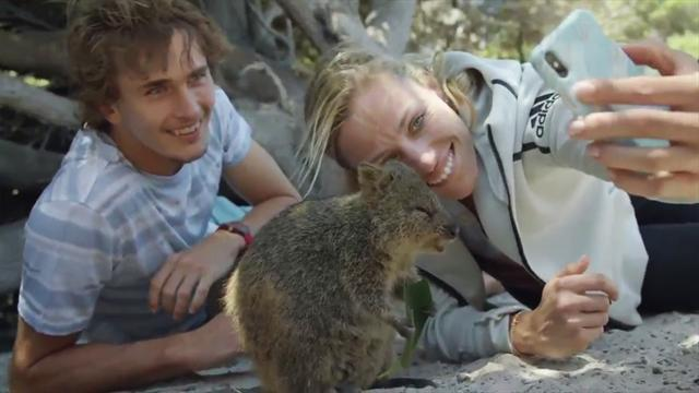 Auge in Auge mit dem Quokka: Kerber und Zverev auf Beach-Tour