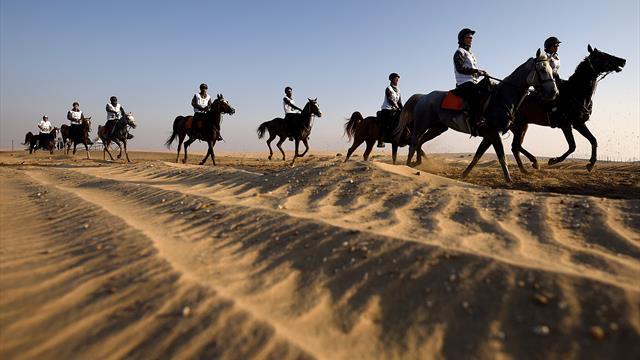 Dubai: Al Marri gana la Endurance Cup