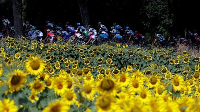 Cofidis y Wanty participarán en el Tour de Francia 2019 como invitados