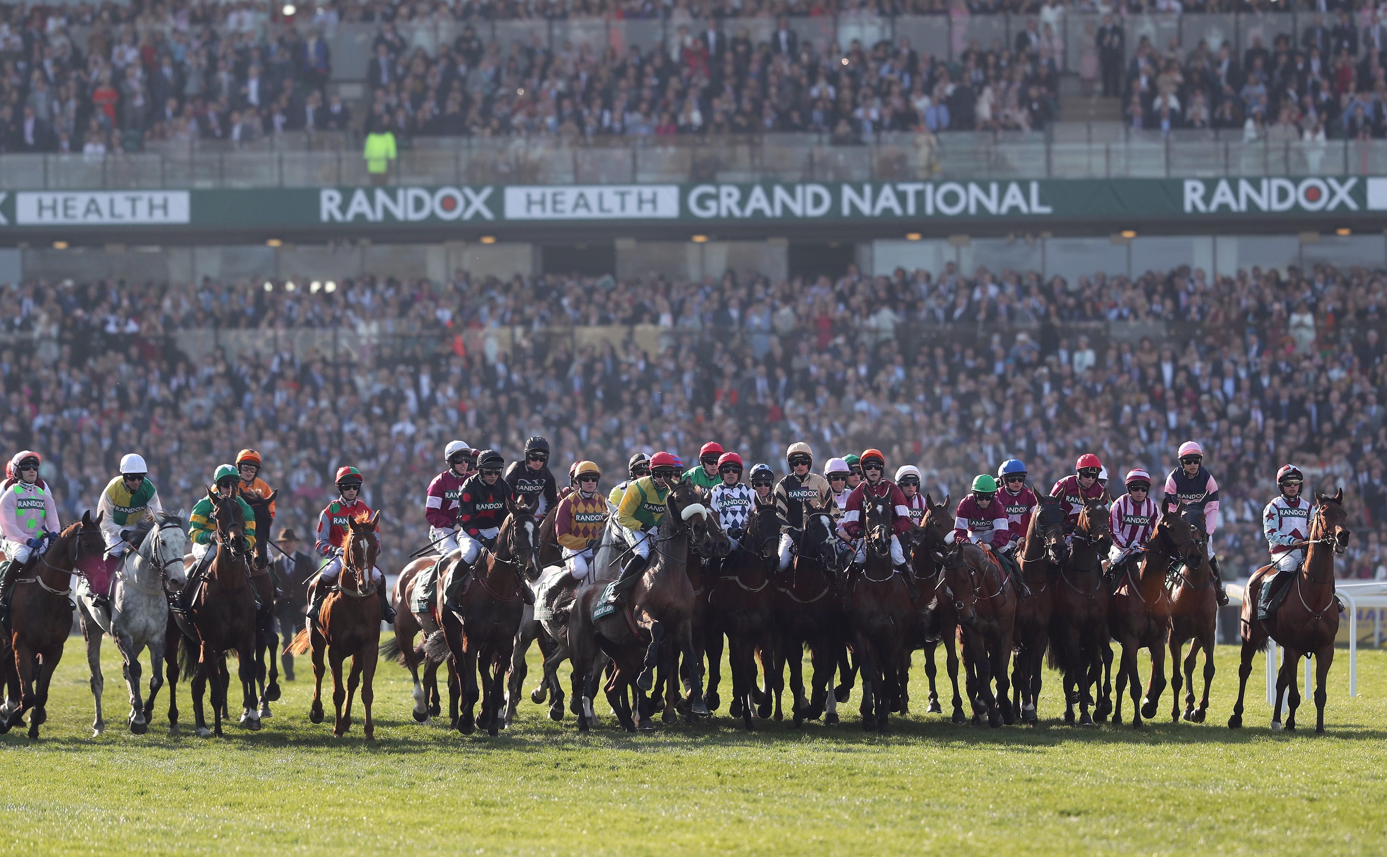 Grand National 2019'da atlar start almayı bekliyor (Bu görsel The Jockey Club'ın izniyle kullanılmıştır)