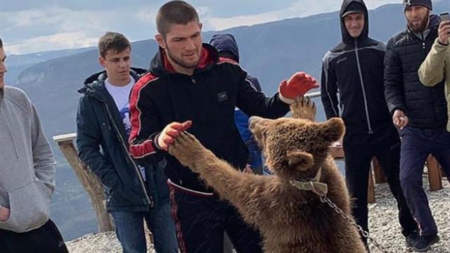 «Со старым другом». Хабиб опять поборолся с медведем