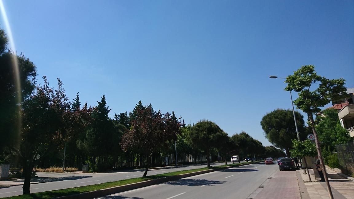Denizlispor - Ağaçlı Yol