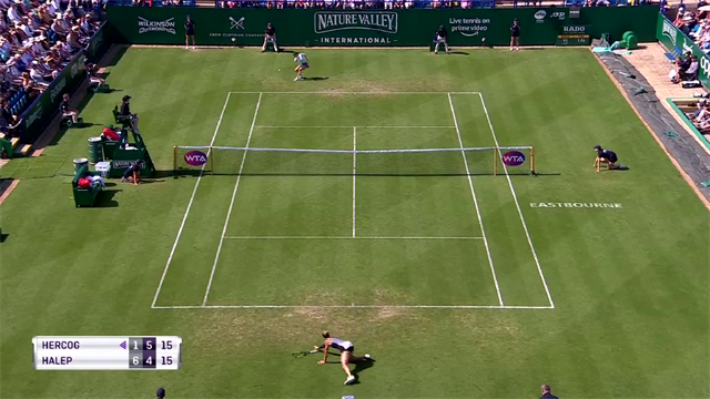Hercog hits deck but still wins the point