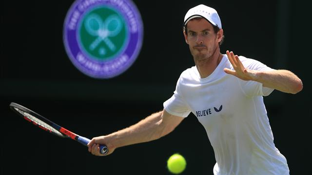 Wimbledon: Serena Williams and Andy Murray considering mixed doubles partnership