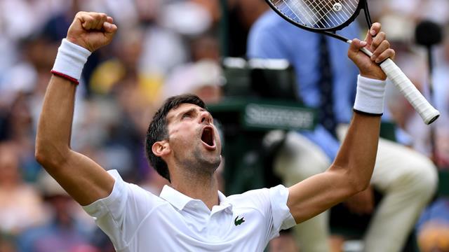 Djokovic cruises into Wimbledon semi-finals