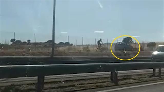 😱🚴 VIDEO: ¡Espeluznante! Un kamikaze invade el carril-bici de Madrid