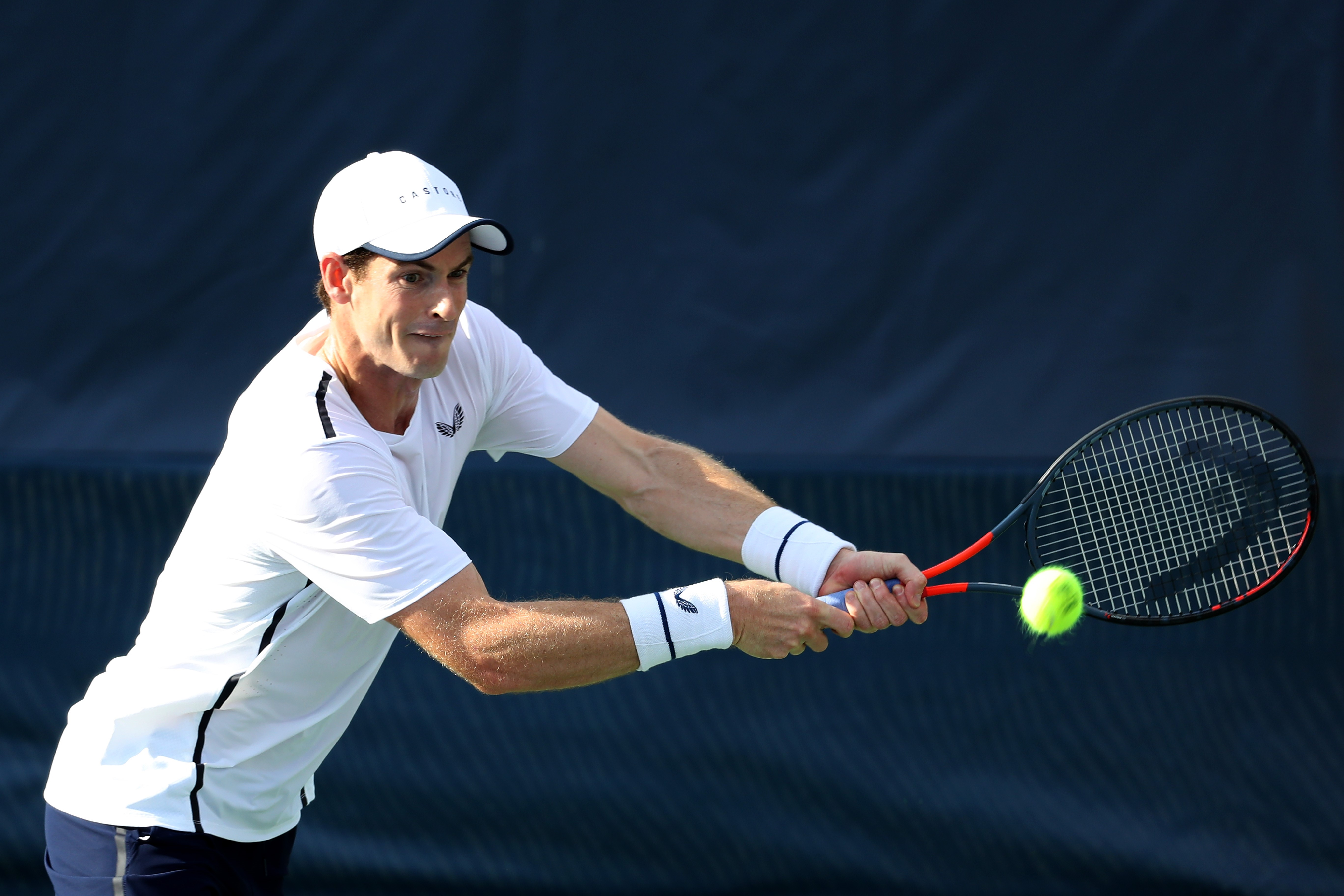 Andy Murray à Washington en 2019