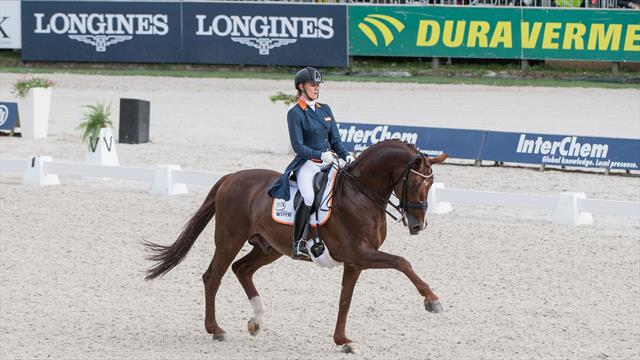 European Championships: dressage riders open the competition in Rotterdam