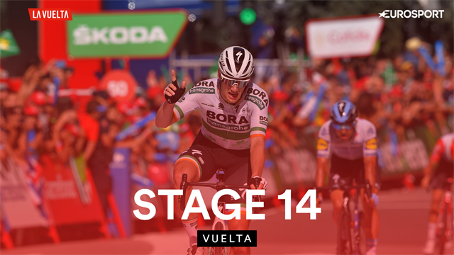 Highlights of Stage 14 as big crash disrupts rare Vuelta 'sprint' day