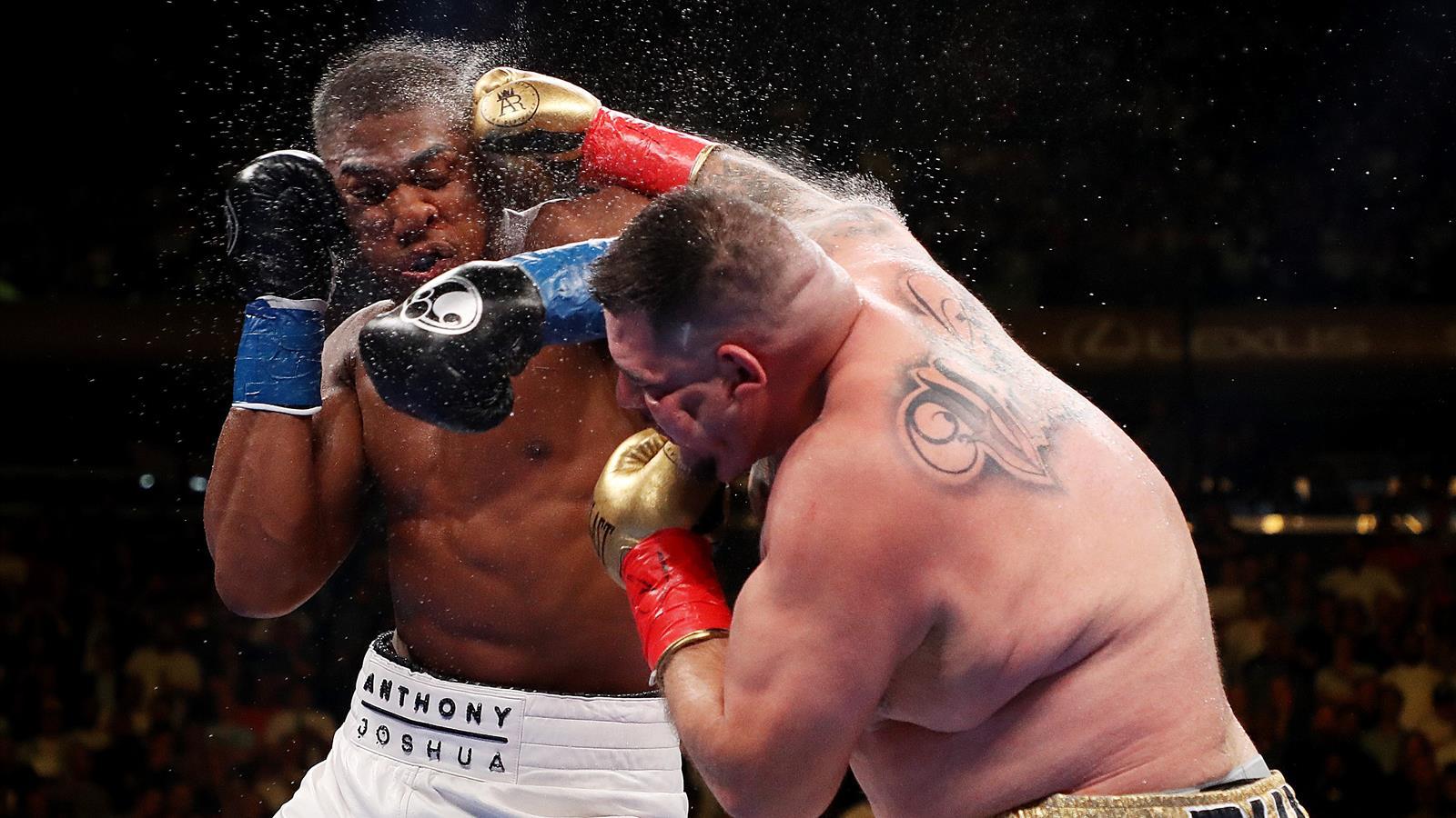 Boxen Schwergewicht Weltrangliste