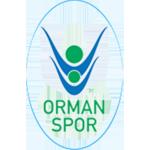 OGM Ormanspor
