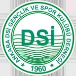 Ankara DSİ