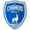 Chamois Niort