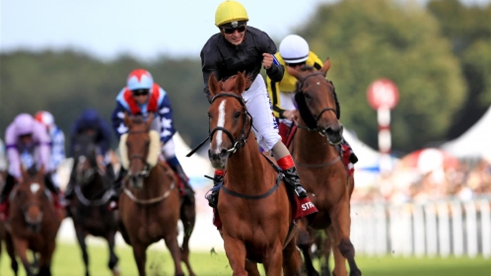 Stradivarius denies Big Orange as Atzeni rides four winners at Goodwood - Horse Racing - Eurosport